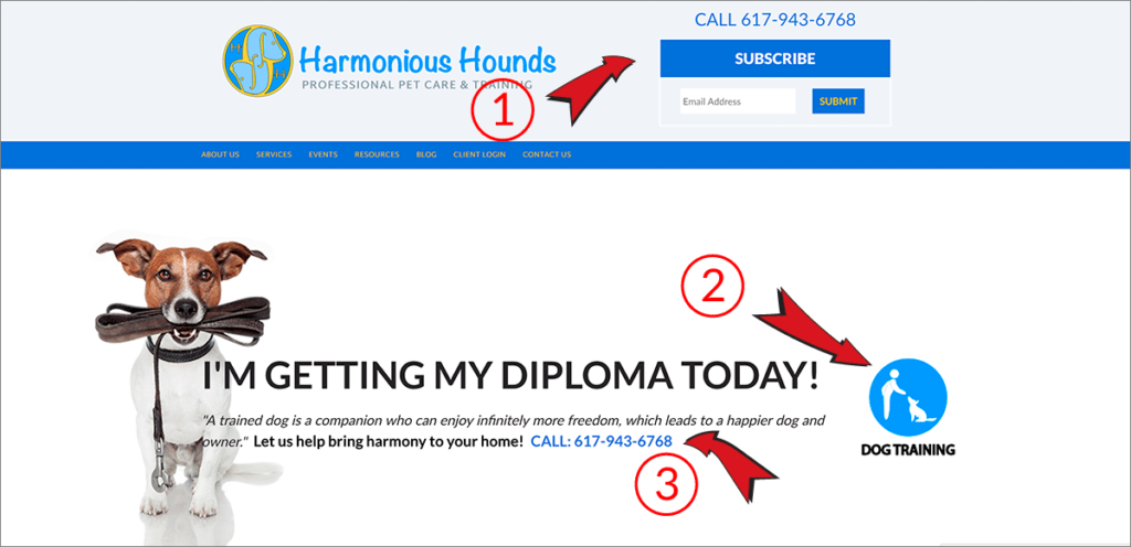 Homepage designs that are SEO friendly