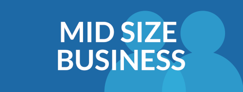 mid size business